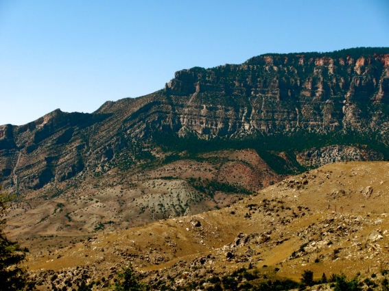 Monocline in Bighorn National Forest, Wyoming